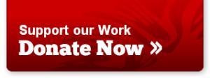 donate_now-2